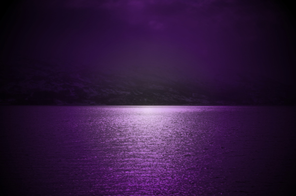 violet lilac background water sun colorized stock photo website background small