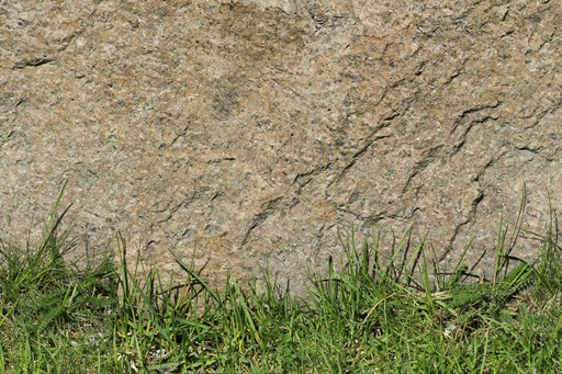 rock-wall-bottom-green-grass-long-leaves-ground-beige-orange-background-scene-photo-natural-sunny-view-x-tiled-texture.jpg